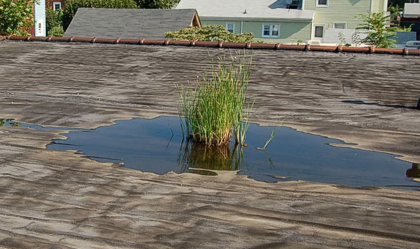 Symptoms of a Commercial Roof Leak